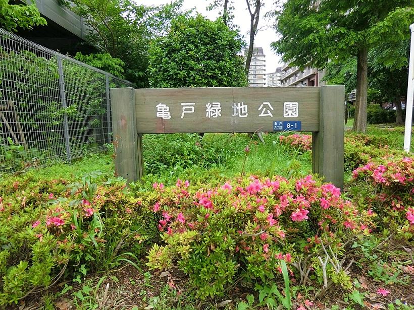 【ペット飼育可‼角部屋‼】パラシオン亀戸の物件写真15