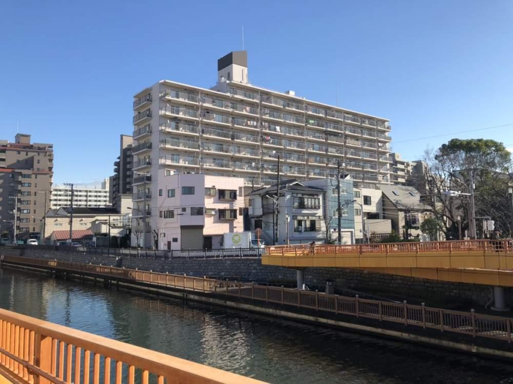 【成約済み買い物便利な立地‼】仙台堀公園ハイツの物件写真09